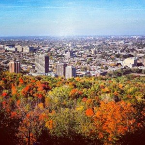 Fall on Mount Royal