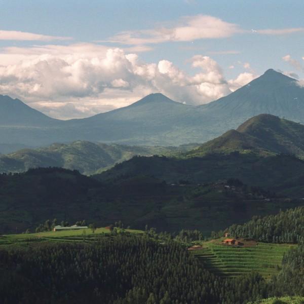 One Good Earth - Rwanda African Hills