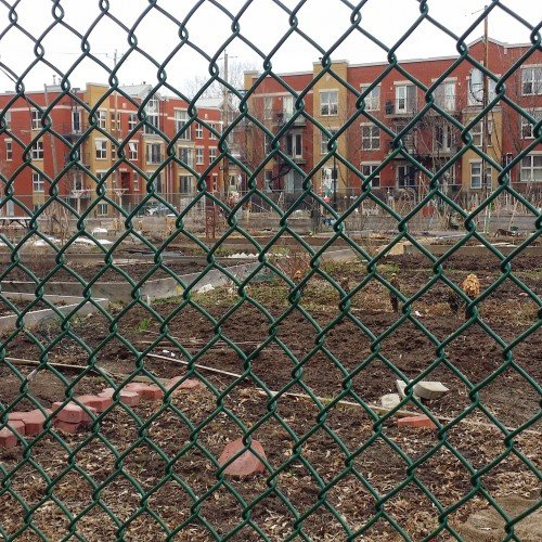 Community Urban Garden