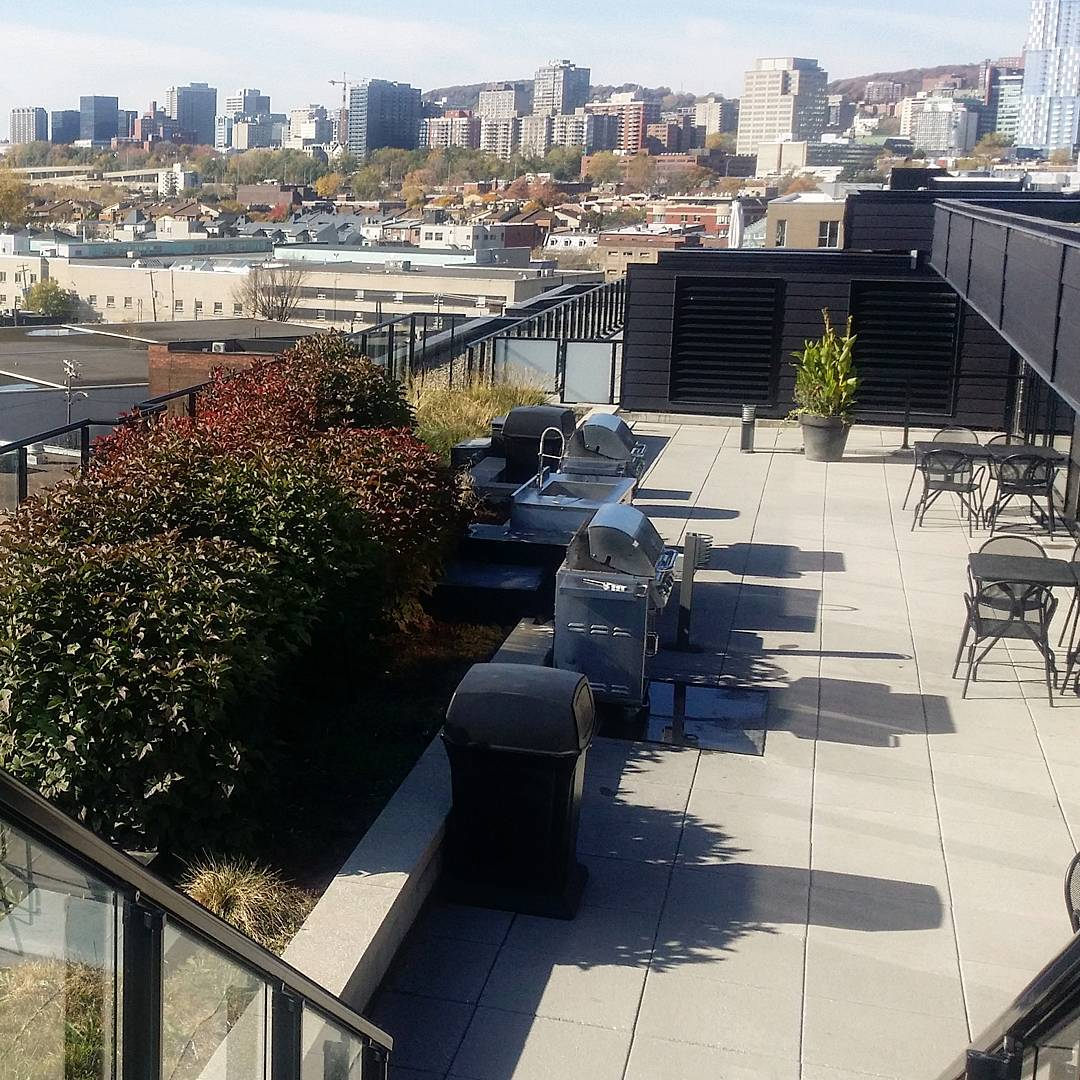 griffintown montreal rooftop