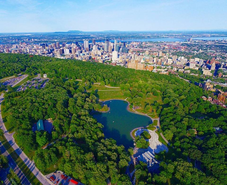 Montreal Real Estate Stories September 2018